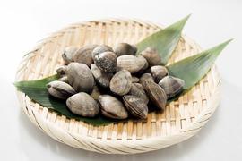 旬の食材「アサリ」~アサリと春キャベツのだし焼きビーフンのレシピ~
