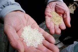 「暮らしに役立つお米とだしの豆知識&体験会」