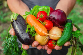 野菜嫌いをなくすコツ教室